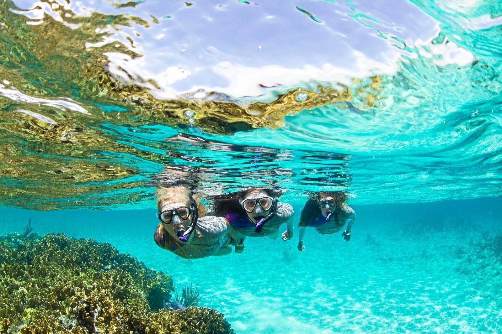 maldive snorkling