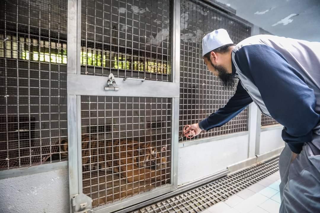 ebit liew bantu zoo negara