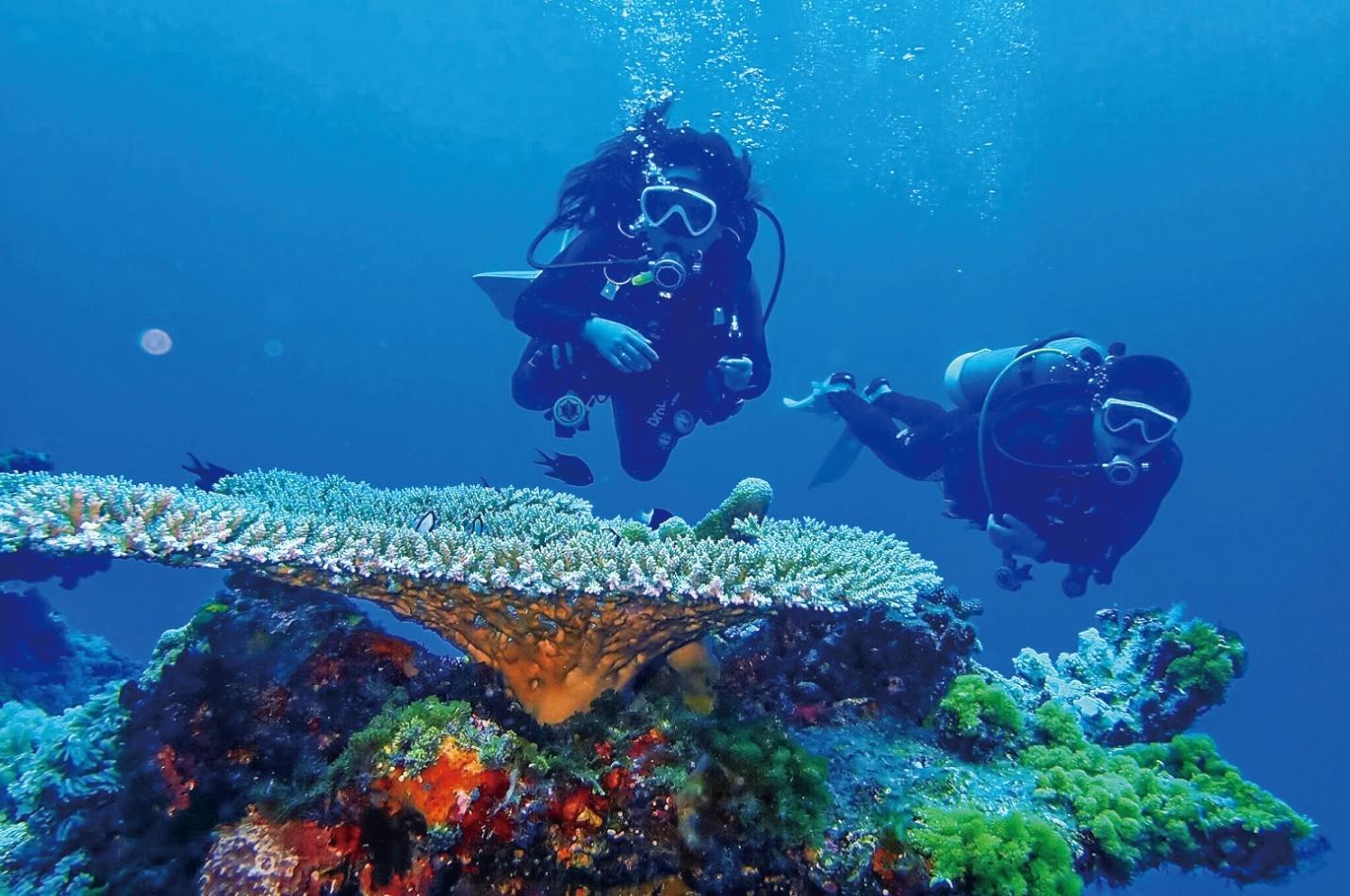 taiwan tourism malaysia
