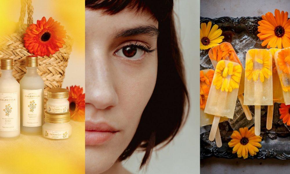Cuasa Panas Merosakkan Kulit? Lindungi Wajah Dengan Rangkaian Calendula Essential Dari The Face Shop