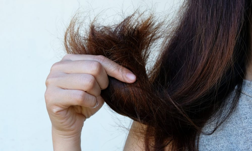 Rambut Kering, Berminyak Dan Gugur Bukan Lagi Isu Besar Dengan Tips Ini